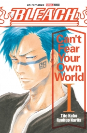 Bleach - Can't fear your own world